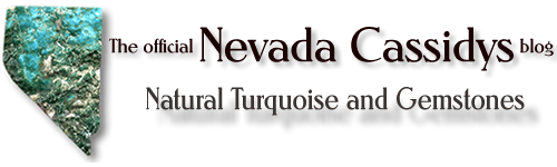 The official Nevada Cassidys blog