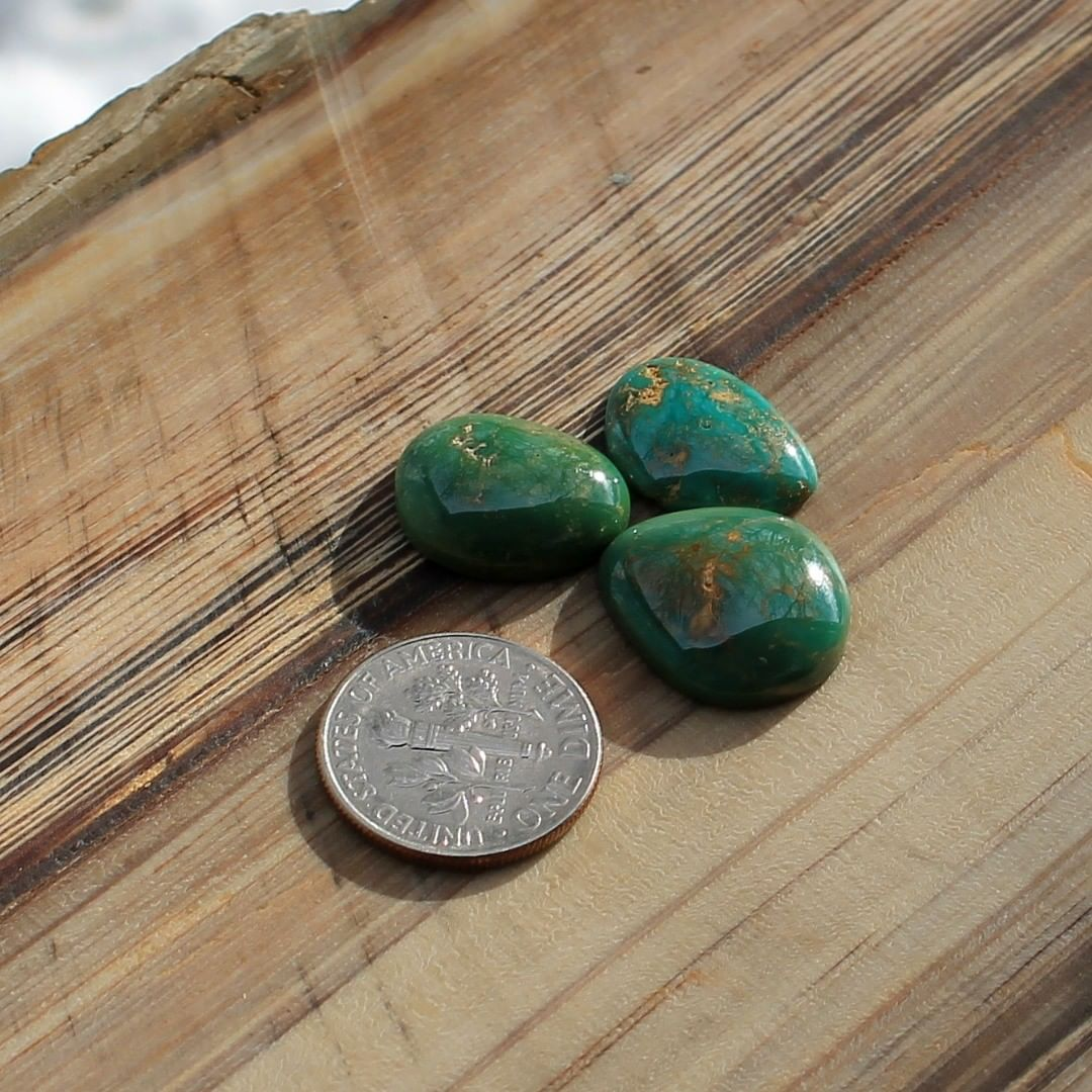 A trio of green Stone Mountain Turquoise cabochons  $55 for 8.5, 7.0, 4.0 carats untreated & un-backed Nevada turquoise.