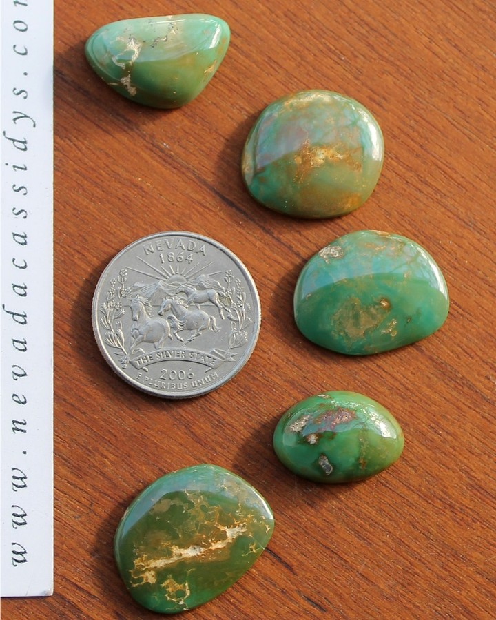 Natural green Stone Mountain Turquoise cabochons  $140 for all or, *from top to bottom 11 carats for $29 12.8 carats for $34 12.5 carats for $34 11.6 carats for $29 11 carats for $29